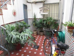casa_sevilla_capital_bellavista_01188